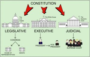 branches of government, election